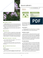 D'Ambrosio et al. 2018- IECTB Fase 2- MQ.pdf