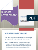 Business Env
