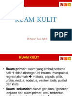 DS-K2 Skin Lesion