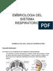 Anatomia y Embriología del Sist. Respiratorio (1)