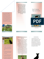 dog trianing brochure finished pdf