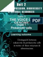 Chapter 1 Prokaryotic Cells