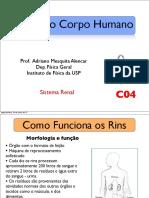 C04-Rins