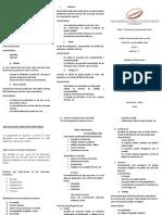 Triptico Comu.pdf
