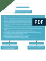 mapa conceptual reglamento sala de sistemas Andres Felipe Bedoya Quirama 10