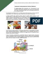 apostila 03_exigências humanas e índices de conforto.pdf