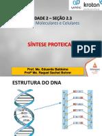 (20171002153410)2.3 aula  Síntese proteica