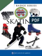 skating.pdf