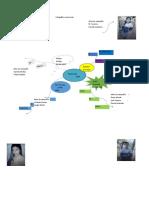 InfografiaPersoneriaHectorDarioGonzalez10°