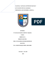 Informe N°05 Hidraulica (Teórico)