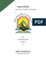 kimia laporan.docx