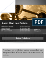 Asam amino dan protein.ppt