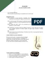 BORRADOR_de_ascarosis[1]