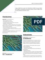 microbiologia padlet