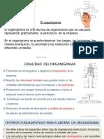 3.1. ADM II Organimetría.pptx