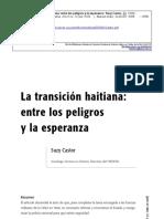 Suzy Castor, La Transición Haitiana