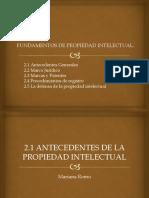 Propiedad Intelectual Final