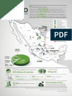 Infografia Canacero