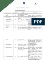 Anexa 17_Structura Prezentarii PA