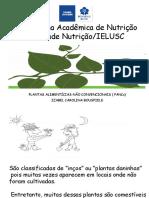 Pancs Semana Acadêmica