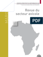 FAO Poultry Report - Morocco - French