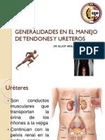 22. Generalidades en El Manejo de Tendones y Ureteros