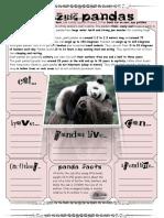 Panda10(Reading Info Transfer)