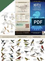 guia_aves_comunes.pdf