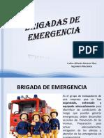 Brigadas de Emergencia (6)