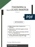New Mitokondria & Glikolisis Anaerob