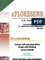 efloresensi.pptx