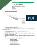 ORGANOGRAFIA CITRICOS CLASE 3.pdf
