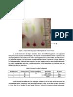 RND2 Pigments