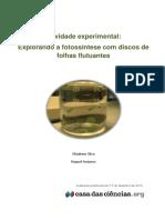 Protocolo Experimental Secundario