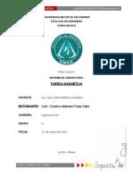 FUERZA MAGNÉTICA.pdf