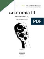 Neuroanatomia 3.0