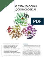 enzimas catalizadoras.pdf