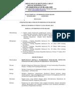 Ep 2.3.1.1 Sk Struktur Organisasi- Copy