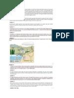 Pembahasan Biologi SMA.pdf