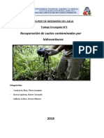 Recuperación-de-suelos-contaminados 2018 II.docx