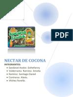 116693169-Nectar-de-Cocona.docx