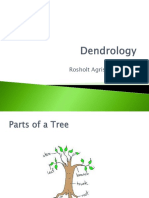 2_Dendrology