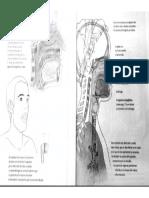 Scan5.pdf