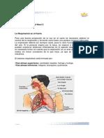 Documento sobre La respiraciòn  TV2 42017.pdf