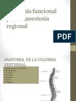 Anatomía Para La Anestesia Regional.pptx1
