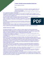 Antropologia_Social_y_Cultural_Alteridad.doc