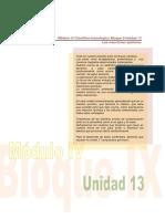 UD13_M4_CITE.pdf