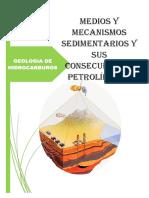 Medios y Mecanismos Sedimentarios y Sus Consecuencinhjmk,l.