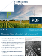 Introduction to Phosphate
