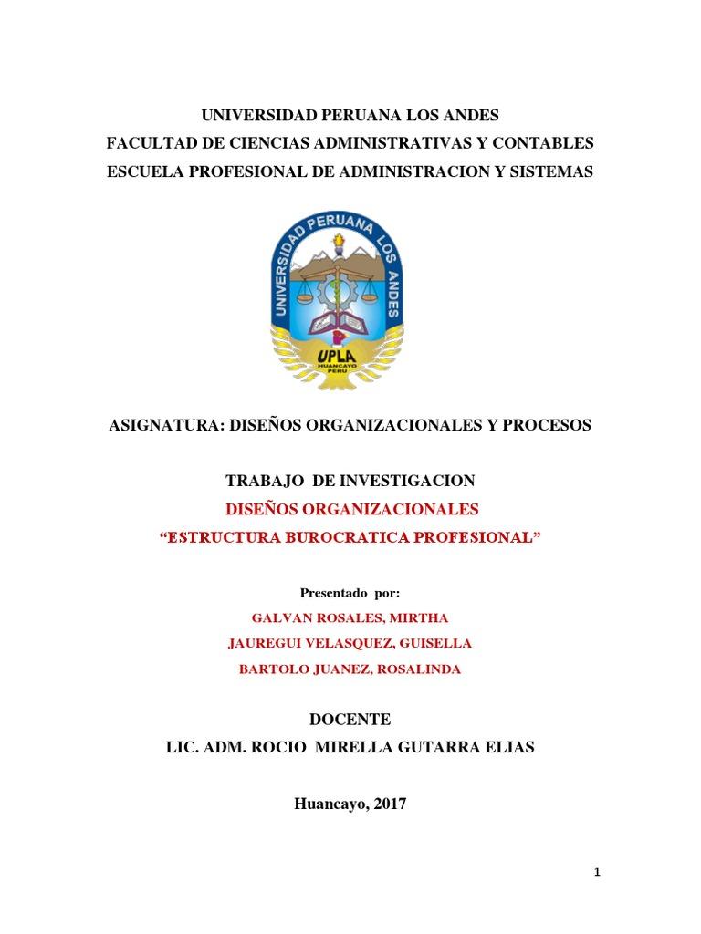 Diseños Organizacionales Estructura Burocratica Profesional